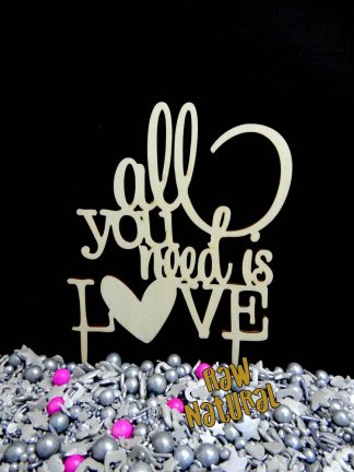 All You Need Raw 3 Ply Wooden Cake Topper